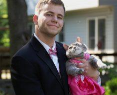Il va au bal de promo avec son chat !